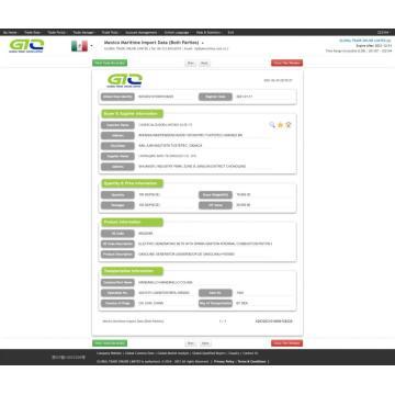 Мексика импортирует пользовательские данные GASOLINE GENERATOR