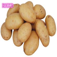 Свежий китайский картофель в Шри-Ланку в Дубай