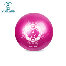 yugland 65cm Yoga Ball Thickened Explosion-proof non slip pink clear yoga ball set with pump