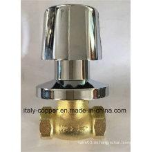 Válvula de globo de zinc con mango de ABS