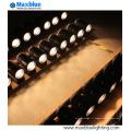 20W / 30W / 45W Blanc Noir Argent CREE COB Éclairage de piste LED (MB-TL01-30W)