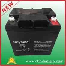 Bateria acidificada ao chumbo de AGM de 12V 24ah para UPS / protetor de impulso