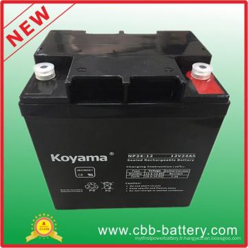 Batterie au plomb d'AGM de 12V 24ah pour UPS / protecteur de montée subite