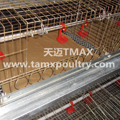 Automatic Poultry Drinking Line