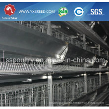 Low Price Battery Cage for Layer