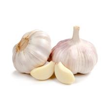 2017 nouvelle récolte emballée sous vide pelées gousses blanches garic