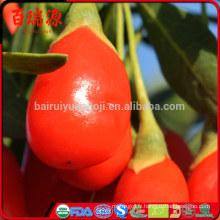 La meilleure vente de baies de goji séchées goji baies goji aide à réduire le poids