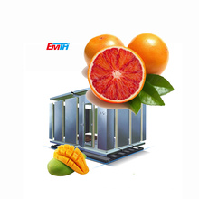 Quick Freezer Cold Room For Fruit