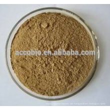 100% Natural Hedera Helix Extrakt Pulver / Hederagenin 5% 10% 20%, Efeu-Extrakt