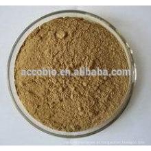 Pó natural do extrato da hélice de Hedera de 100% / Hederagenin 5% 10% 20%, extrato da folha da hera