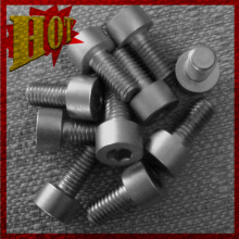 Customized Titanium Alloy Screw for Sale