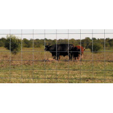 valla de ganado de malla de alambre barato fuerte de alta calidad