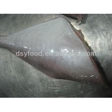 Gefrorener Fisch