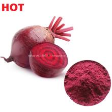 Extrait végétal naturel de betterave en poudre