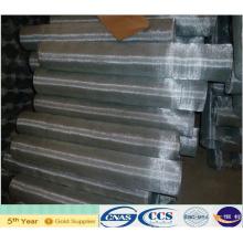 Electro Galvanized Mosquito Netting (XA-SM23)