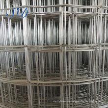 Malla de alambre soldada con autógena caliente del acero inoxidable