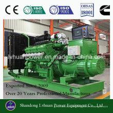 Schweigendes Genset oder elektrisches Kraftwerk 100kw für Biogas-Generator des Methans