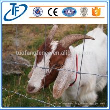 hot sale sheep wire mesh/farm field fence with competitive price