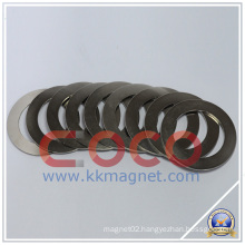 Ring NdFeB Magnets for Wind Turbine Generator