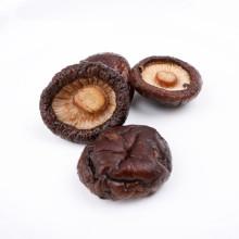 dried shiitake without stem