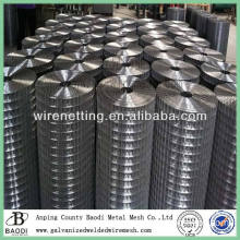 roll galvanized welded wire mesh importer