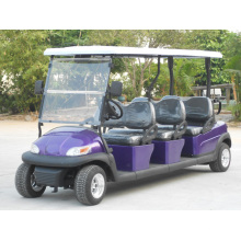 Faltbare Windschutzscheibe Preise Elektrische Golf Car für Golfplatz (A1S6)