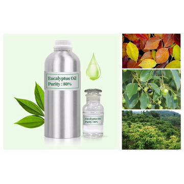 100% natürlicher Eukalyptus ätherisches Öl Bulk-Preis