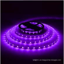 Tira de LED morada Ce y Rhos 60SMD5050