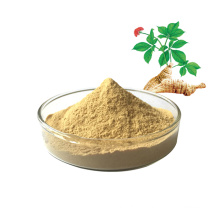 Factory supply 10% -80% american ginseng extract American Ginseng Extract Powder