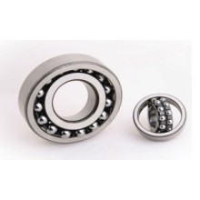 Self Aligning Ball Bearing 1204