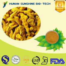Grado farmacéutico de la curcumina 100% natural / Curcuma longa L. / 50% 90% 95% 98% HPLC de curcumina