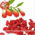 EU Standard Organic Goji Berry