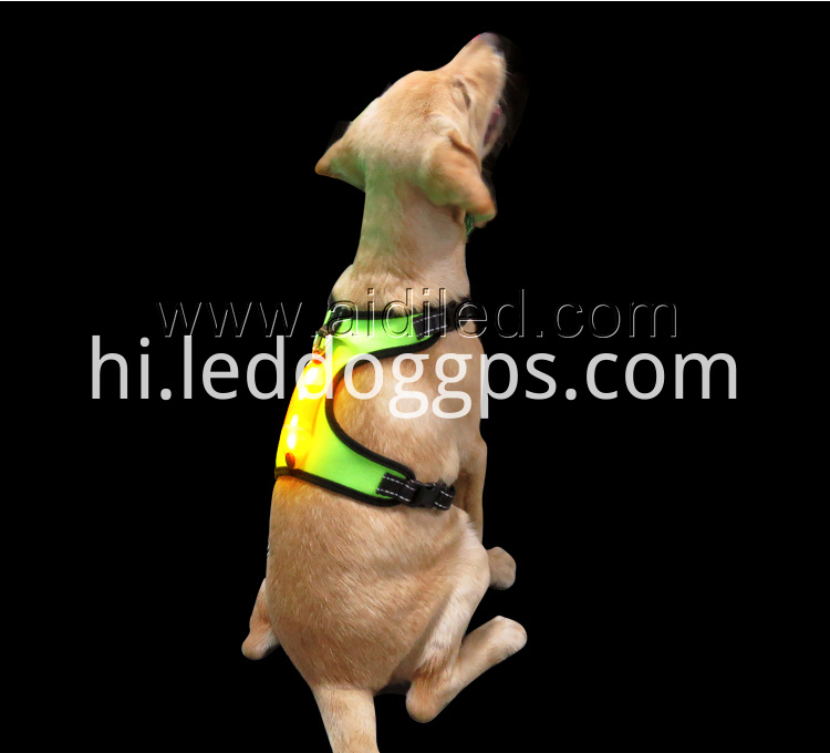 Lighted Dog Vest