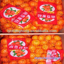 Chinesisch frische Orange / Ananas Zitrusfrucht