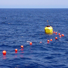 Surface Support Buoys