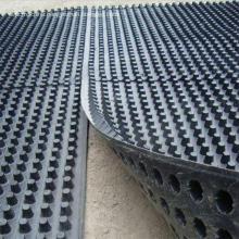 Cavity Sheet Waterproof Membrane Drainage Board/Cell