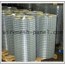 Hot Dipped galvanizado soldado Wire Mesh rolo (Anping Factory)