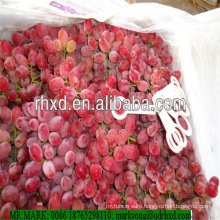 Pampas original seedless grape red globe grapes coming with high quality