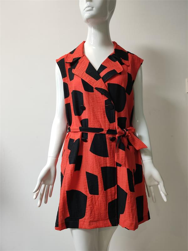 Red and Black Printed Dress