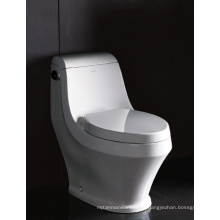 WC WC Watersense produit par EAGO (TB133M)