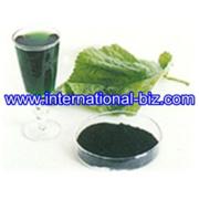 OIL-SOLUBLE CHLOROPHYLL (COPPER CHLOROPHYLL)