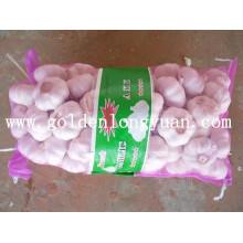 L'ail Jinxiang de l'usine locale