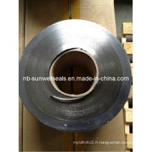 Ruban de graphite flexible pour joint en spirale
