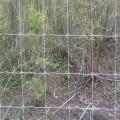 Clôture de ferme galvanisée à chaud pour clôture de cerf