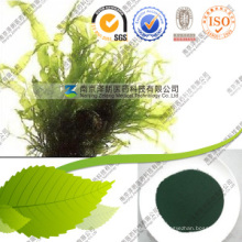 Wholesale Spirulina Manufacturers of Spirulina Powder Organic