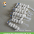 Good Price Shandong Fresh Snow White Garlic 5.5CM
