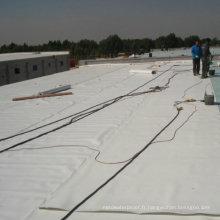 Feuille imperméable de Garage Tpo / matériau de toiture avec ISO (blanc)