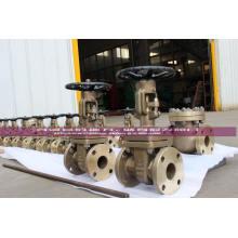 Válvula de retención abatible Ni Al Bronze C95800