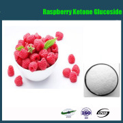 Anti-cancer Raspberry Ketone Weight Loss/Raspberry Extract/Raspberry Ketone