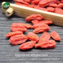 Getrocknete Goji Beeren jiangnanhao Goji Vorteile von Goji Beeren wachsende Goji Beeren